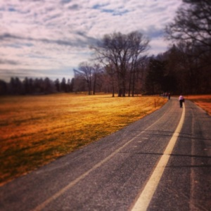 Photo from Sunday's recovery run through Trexler Park.