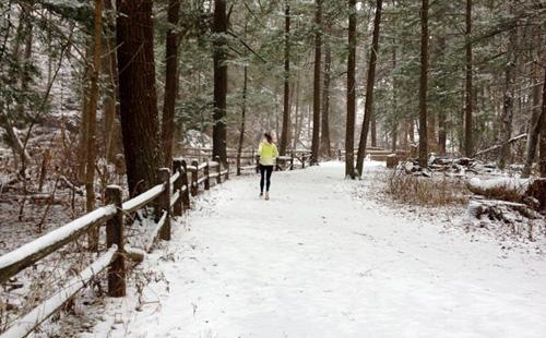Snowy Run2